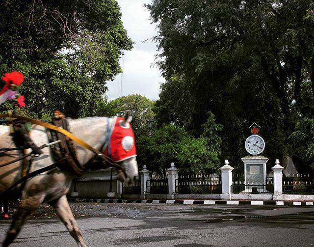 Andong yang melintasi jalanan sekitar Kraton Yogyakarta.