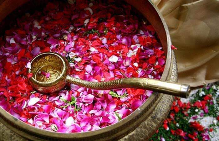 Bunga Setaman   @menaramadinah.com