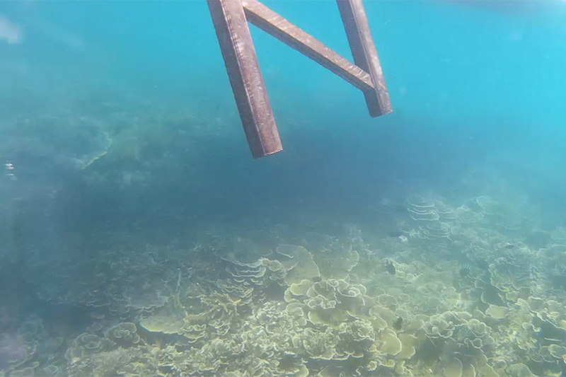Pemandangan Bawah Laut Pulau Lengkuas