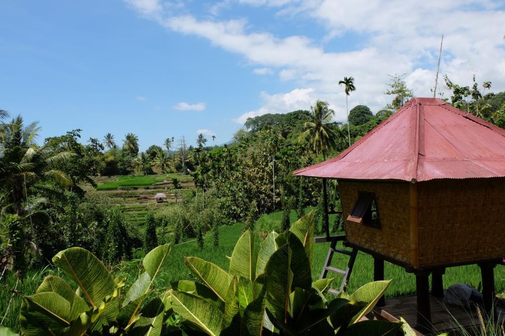 Wetu Telu | Wanderlust Indonesia