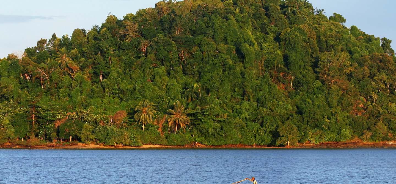 Lokasi Hutan Mangrove