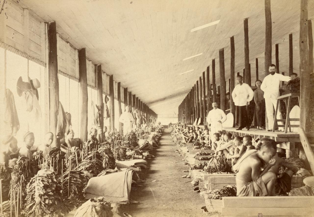 Ilustrasi kondisi buruh pada masa penjajahan   Foto: netralnews.com
