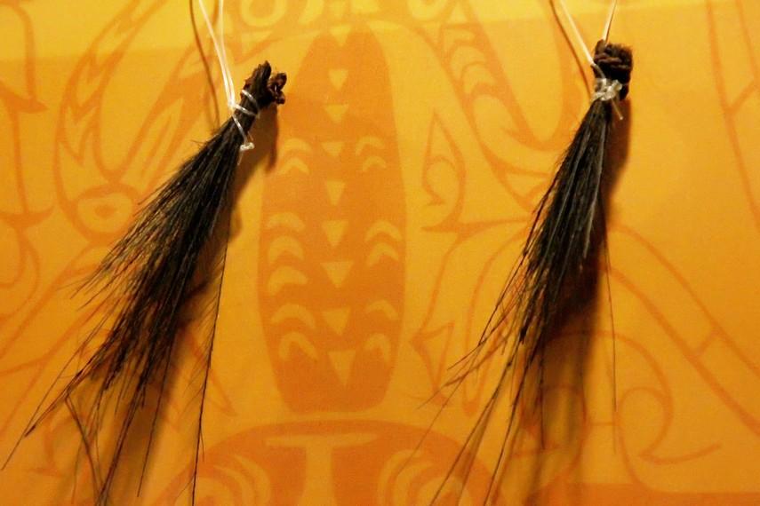 Hiasan telinga untuk laki - laki, digunakan ketika berburu (sumber : indonesiakaya.com)