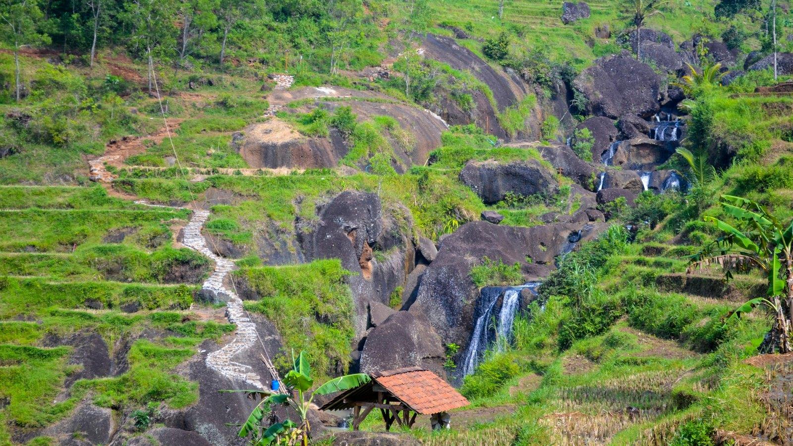 Desa Wisata Nglanggeran | Foto : Travelink Indonesia