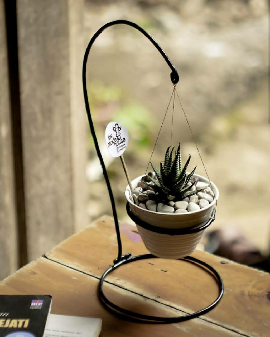 The Prickle House juga menyediakan standing pot berbahan besi yang sangat menarik untuk dijadikan pajangan