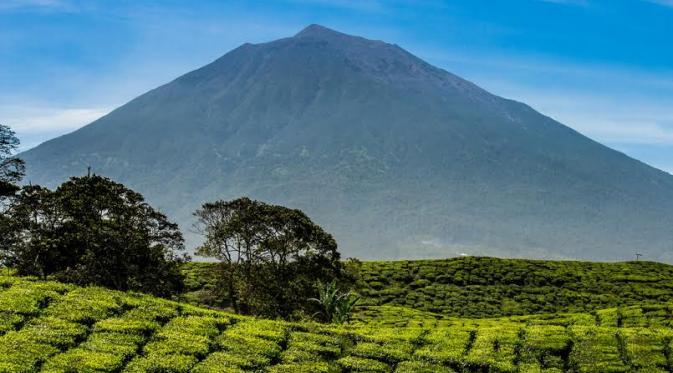 Gunung Kerinci | liputan6.com