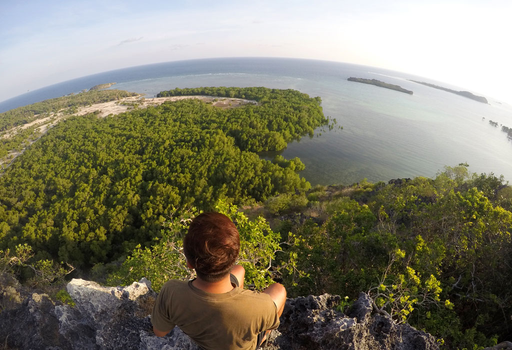 Panorama pantai dan hutan mangrove Pulau Rote dari puncak Bukit Mando'o